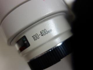 DSC01147 (800x600).jpg